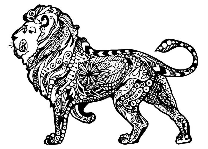 Lion Greeting Card featuring the drawing Elegant Lion by Sadie Maughan