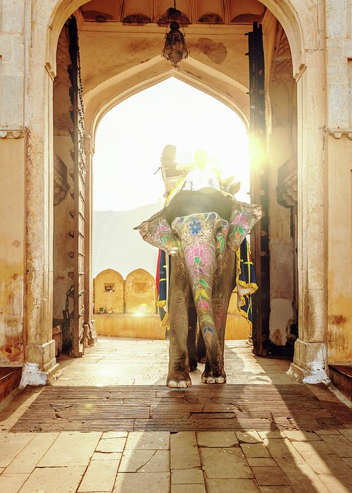 Working Animal Greeting Card featuring the photograph Elephant At Amber Palace Jaipur,india by Mlenny