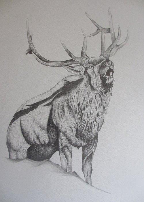 Mountain Elk Greeting Card featuring the drawing Elk by Pete Garcia