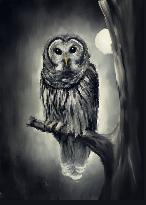 Owl Greeting Card featuring the photograph Elusive Owl by Lourry Legarde