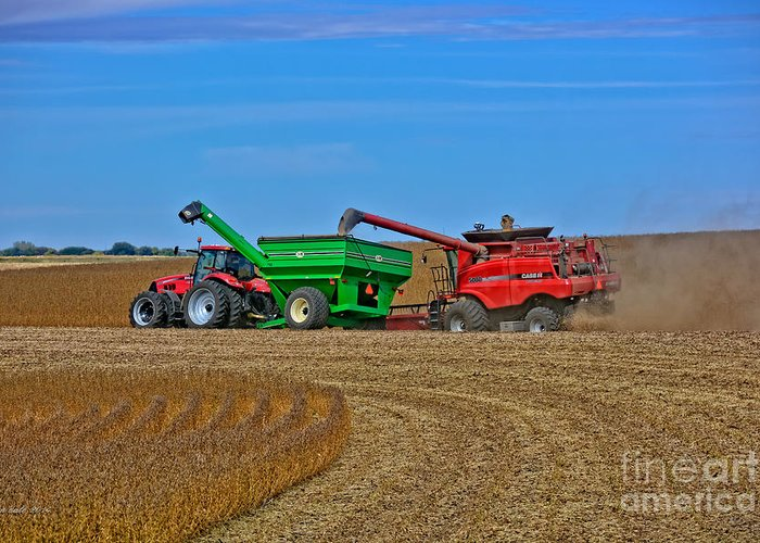 South Daakota Greeting Card featuring the photograph Empty The Combine by M Dale