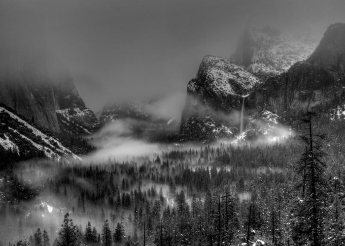 Black And White Greeting Card featuring the photograph Enchanted Valley In Black And White by Bill Gallagher