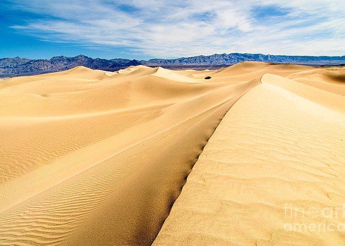 Sand Dunes National Park Greeting Cards