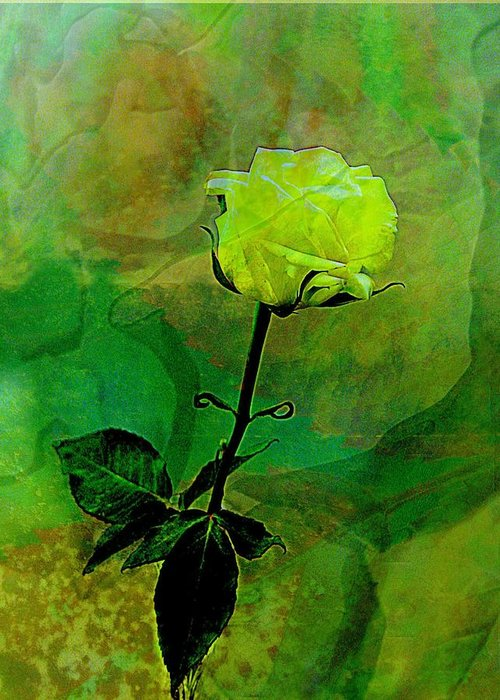 Rose Greeting Card featuring the photograph Enduring Yellow Rose by Shirley Sirois