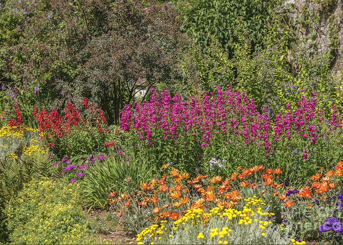 Colors Greeting Card featuring the photograph English Garden In Summertime by Patricia Hofmeester