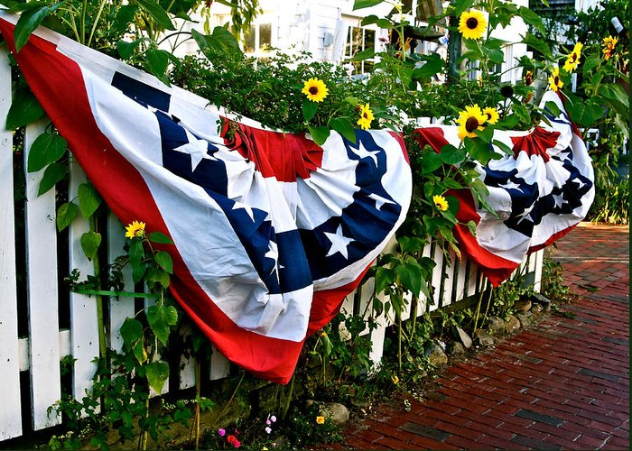 Bunting Greeting Card featuring the photograph Enjoy The Day by Ira Shander
