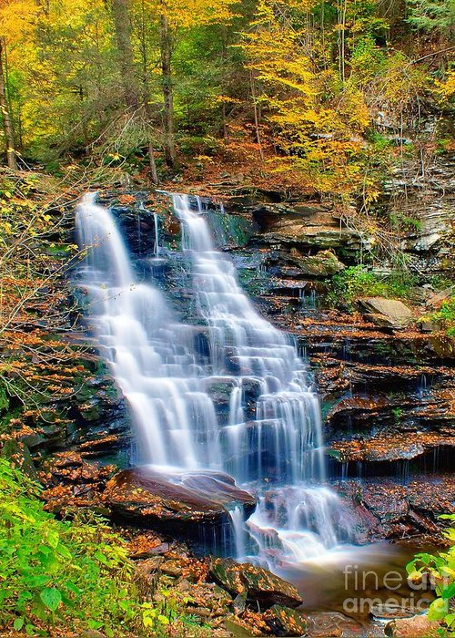 Waterfall Greeting Card featuring the photograph Erie Falls by Nick Zelinsky