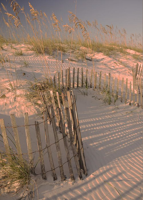 Orange Beach Greeting Card featuring the photograph Evening At The Beach by Maria Suhr