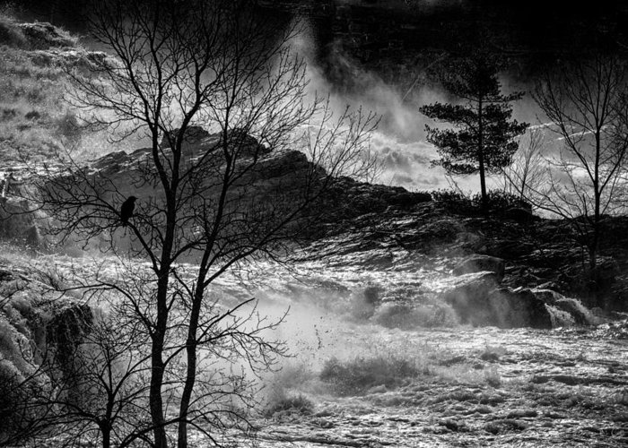 Night Greeting Card featuring the photograph Evening Great Falls Maine by Bob Orsillo