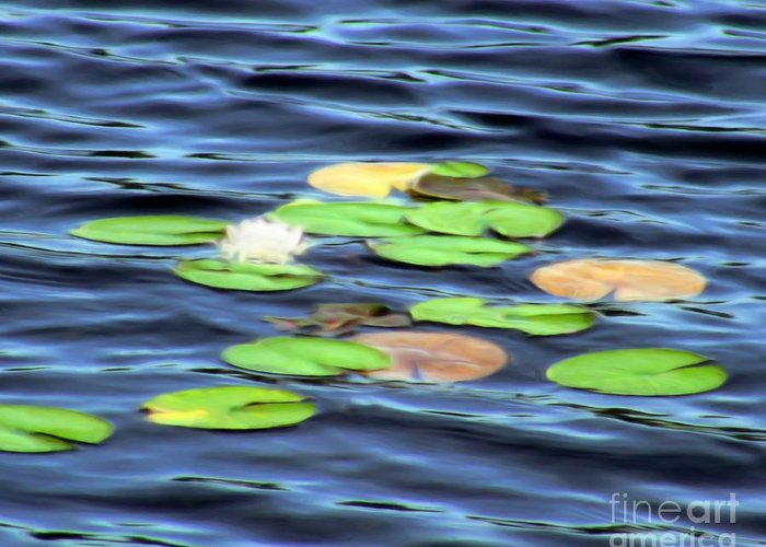 Water Greeting Card featuring the painting Evening Lake With Water Lily by Pet Serrano