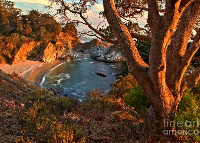 Mcway Falls Greeting Card featuring the photograph Evening Light At Pfeiffer Burns by Adam Jewell