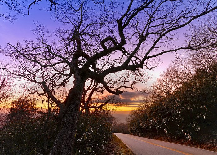Appalachia Greeting Card featuring the photograph Evening Tree by Debra and Dave Vanderlaan