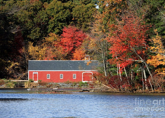 Foliage Greeting Card featuring the photograph Fall At The Mill by Jayne Carney