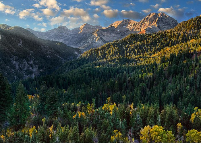 Mount Timpanogos Greeting Card featuring the photograph Fall Colors On Mt. Timpanogos by Douglas Pulsipher