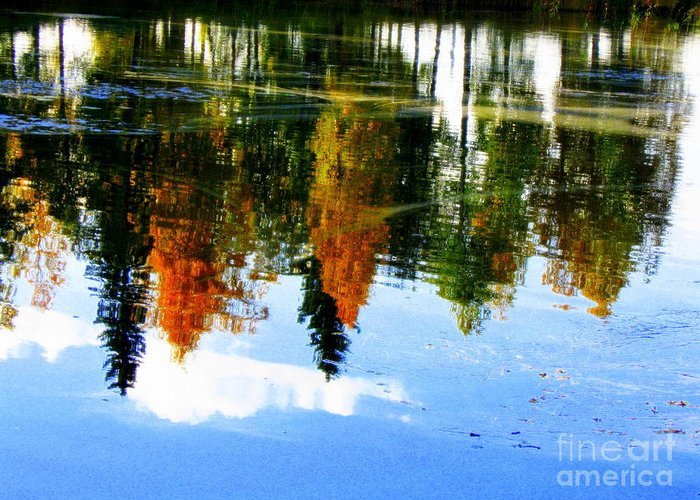 Autumn Canvas Prints Greeting Card featuring the photograph Fall Colors by Pauli Hyvonen