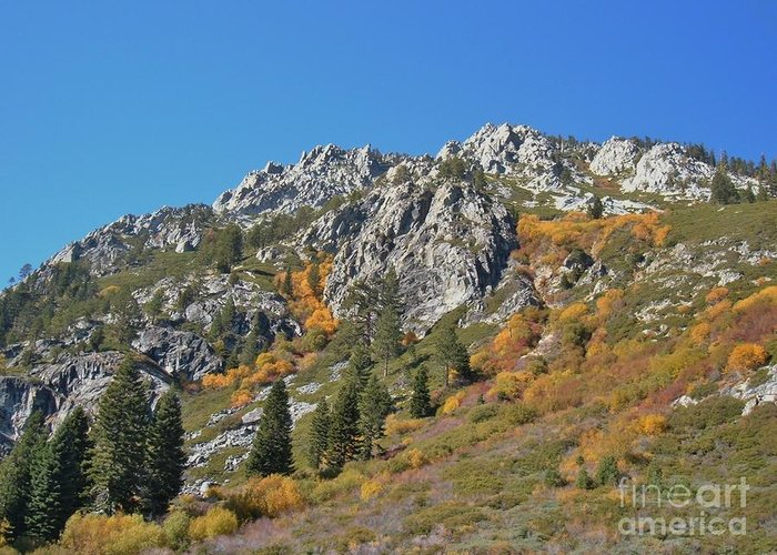Fall Greeting Card featuring the photograph Fall Colors S Lake Tahoe California by Julie Doerges