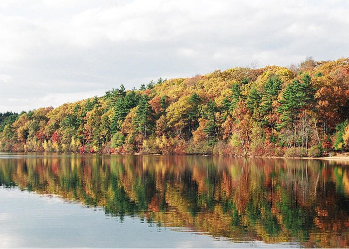 Fall Greeting Card featuring the photograph Fall Foliage At Walden Pond by John Sarnie