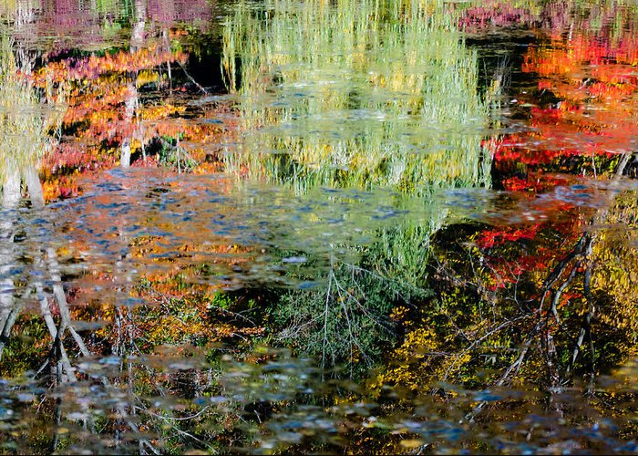 Water Greeting Card featuring the photograph Fall Foliage Reflection 3 by Craig Levin