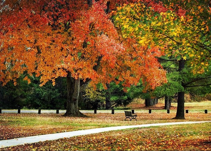 Fall Greeting Card featuring the photograph Fall In The Park by Christina Rollo