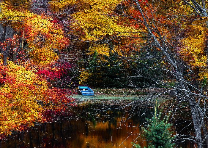 Fall Greeting Card featuring the photograph Fall Pond And Boat by Tom Mc Nemar
