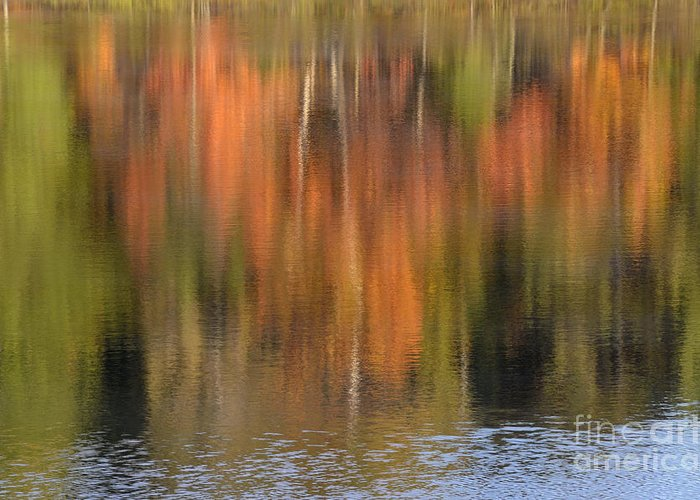 Autumn Greeting Card featuring the photograph Fall Reflections by Birgit Tyrrell