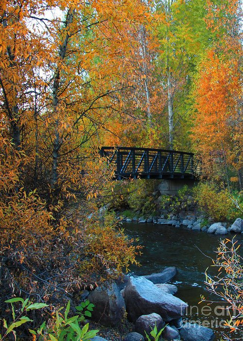 Bridge Greeting Card featuring the photograph Fall River by Dana Kern