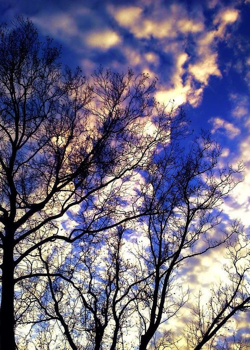 Sky Greeting Card featuring the photograph Fall Sky by Michelle Flory