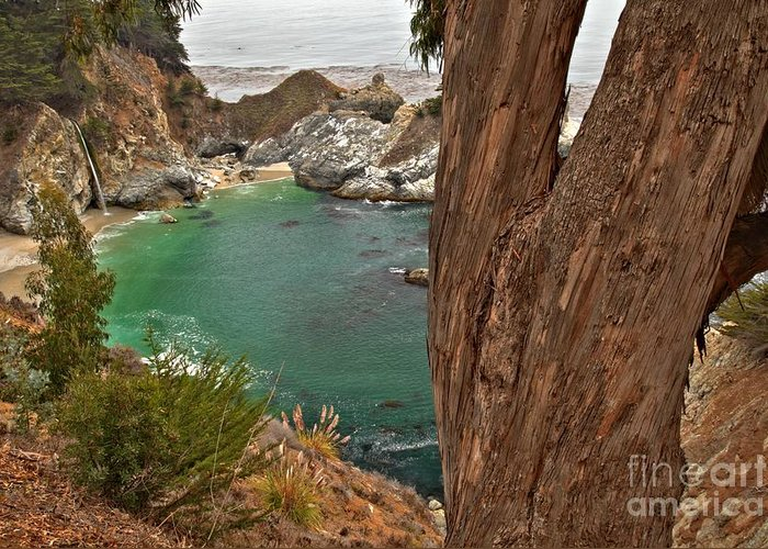 Mcway Falls Greeting Card featuring the photograph Falling Into The Bay by Adam Jewell