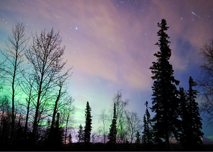 Aurora Greeting Card featuring the photograph Falling Star And Aurora by Ron Day
