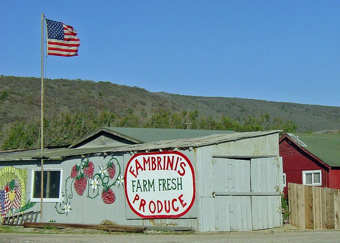 Farm Fresh Produce Greeting Card featuring the photograph Fambrini's Farm Fresh Produce by Suzanne Gaff