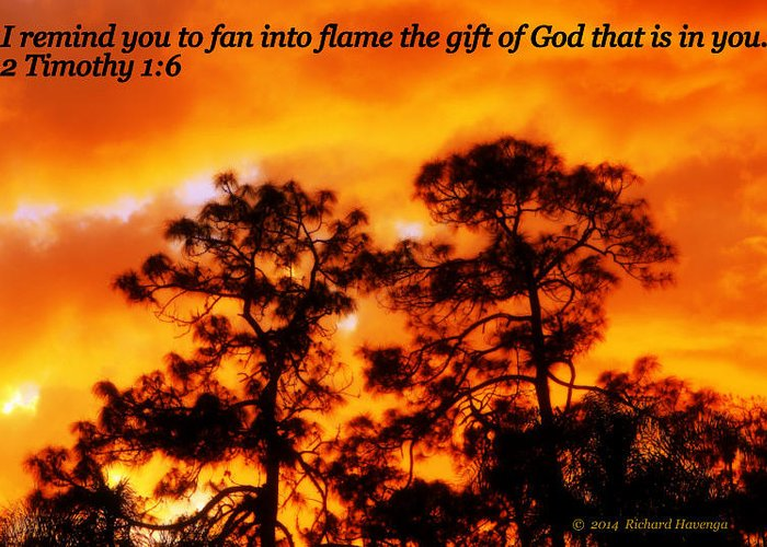 Fire Greeting Card featuring the photograph Fan Into Flame by Richard Havenga