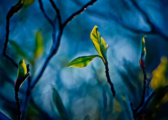 Blue Greeting Card featuring the digital art Fantasy In Blue by Linda Unger