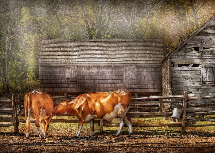 Savad Greeting Card featuring the photograph Farm - Cow - A Couple Of Cows by Mike Savad
