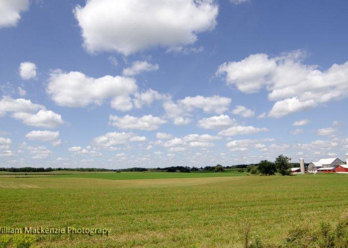 Summer Farmland Greeting Card featuring the pyrography Farmland by William MacKenzie