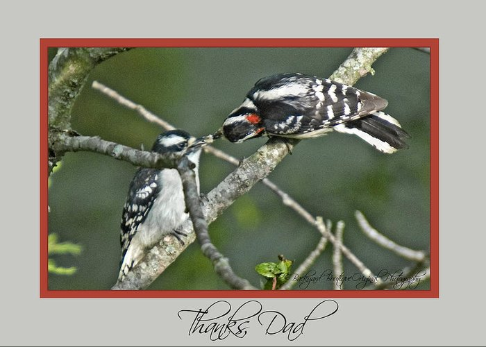 Birds Greeting Card featuring the photograph Fathersday05 by Helen Ellis