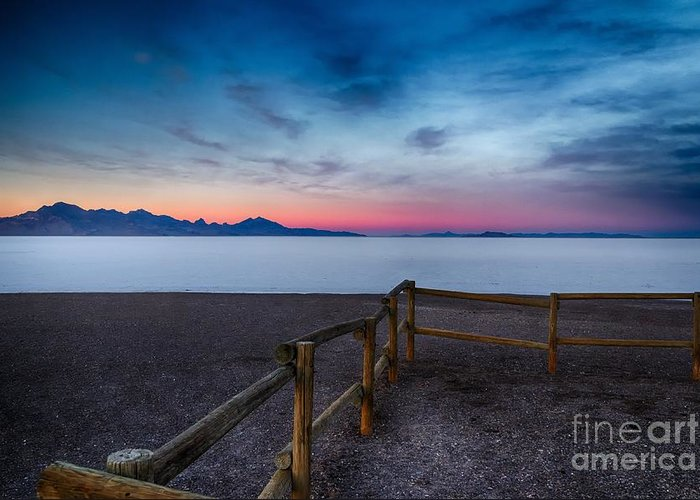 Salt Flats Greeting Card featuring the photograph Fence By The Salt Flats by Mitch Johanson