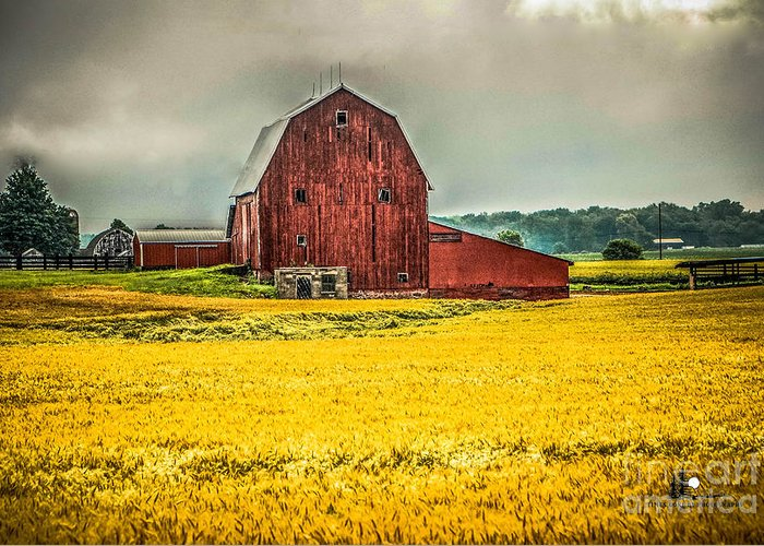 Barn Greeting Card featuring the photograph Field And Barn by Grace Grogan