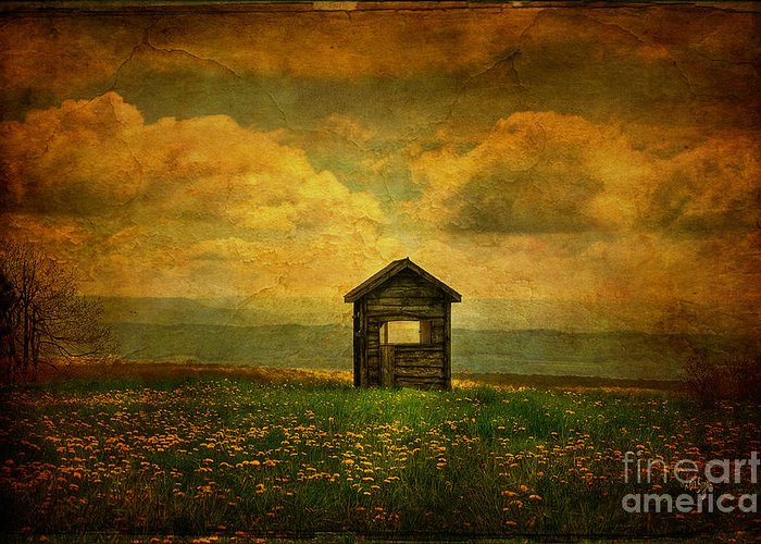 Shed Greeting Card featuring the photograph Field Of Dandelions by Lois Bryan