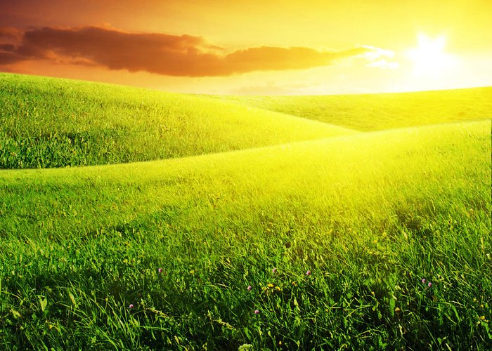 Field Of Grass Greeting Card featuring the photograph Field Of Grass And Sunset by Boon Mee