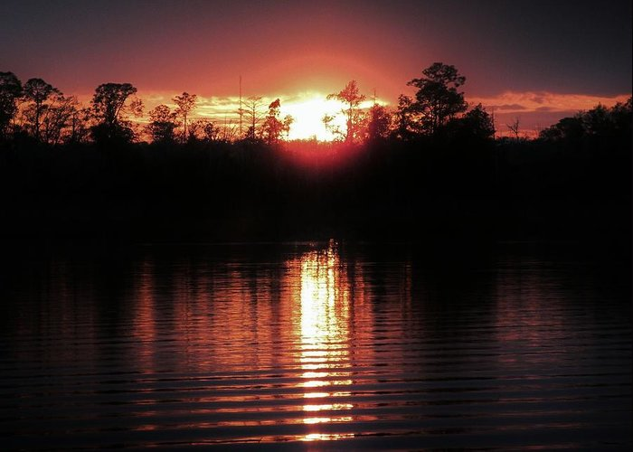Sunset Greeting Card featuring the photograph Finally by Terri Cox