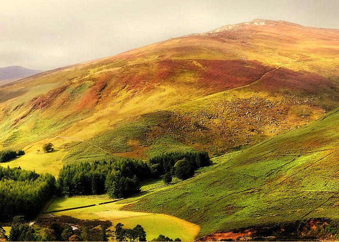 Ireland Greeting Card featuring the photograph Find The Soul. Golden Hills Of Wicklow. Ireland by Jenny Rainbow