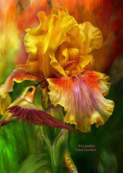 Iris Greeting Cards