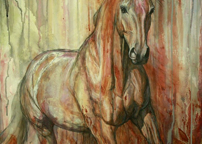 Equestrian Greeting Cards
