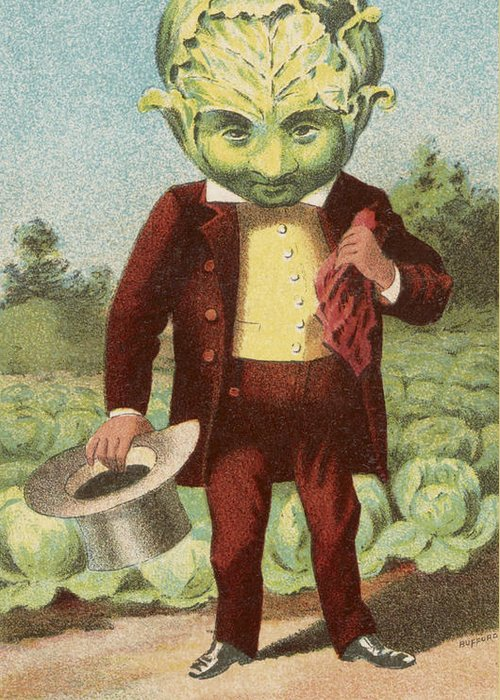 Vintage Greeting Card featuring the drawing First Premium Cabbage Head by Aged Pixel