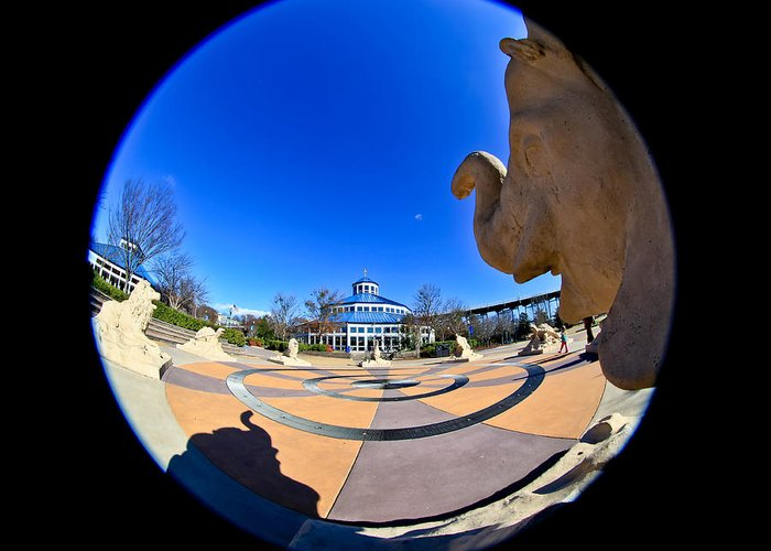 Chattanooga Greeting Card featuring the photograph Fish Eye View Of Coolidge Park by Tom and Pat Cory