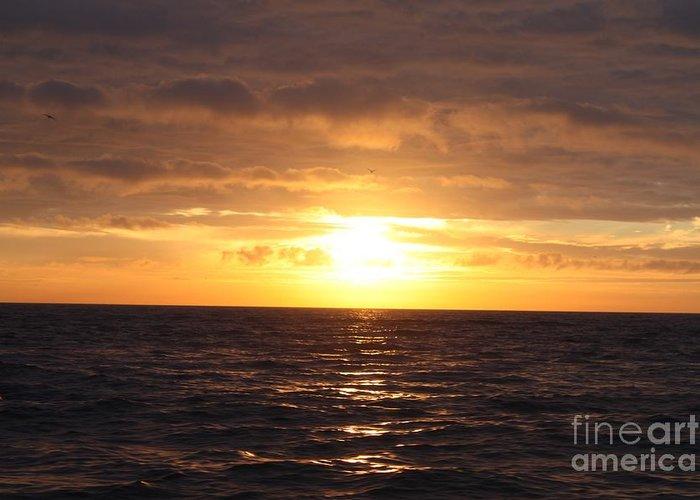 Fishing Into The Sunrise Greeting Card featuring the photograph Fishing Into The Sunrise by John Telfer