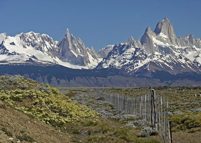 Argentina Greeting Card featuring the photograph Fitz Roy Range in Springtime 1 by Michele Burgess