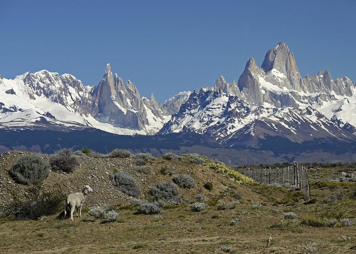 Argentina Greeting Card featuring the photograph Fitz Roy Range in Springtime 2 by Michele Burgess