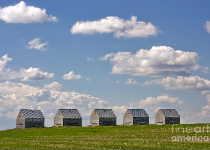 Landscape Greeting Card featuring the photograph Five Sheds On The Alberta Prairie by Louise Heusinkveld