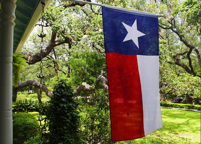 Symbols Of Texas Art Fine Art America